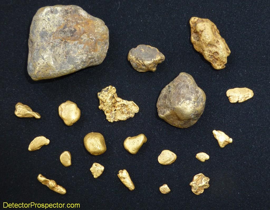 steve-herschbach-nearly-5-ounces-jack-wade-gold-2013.jpg