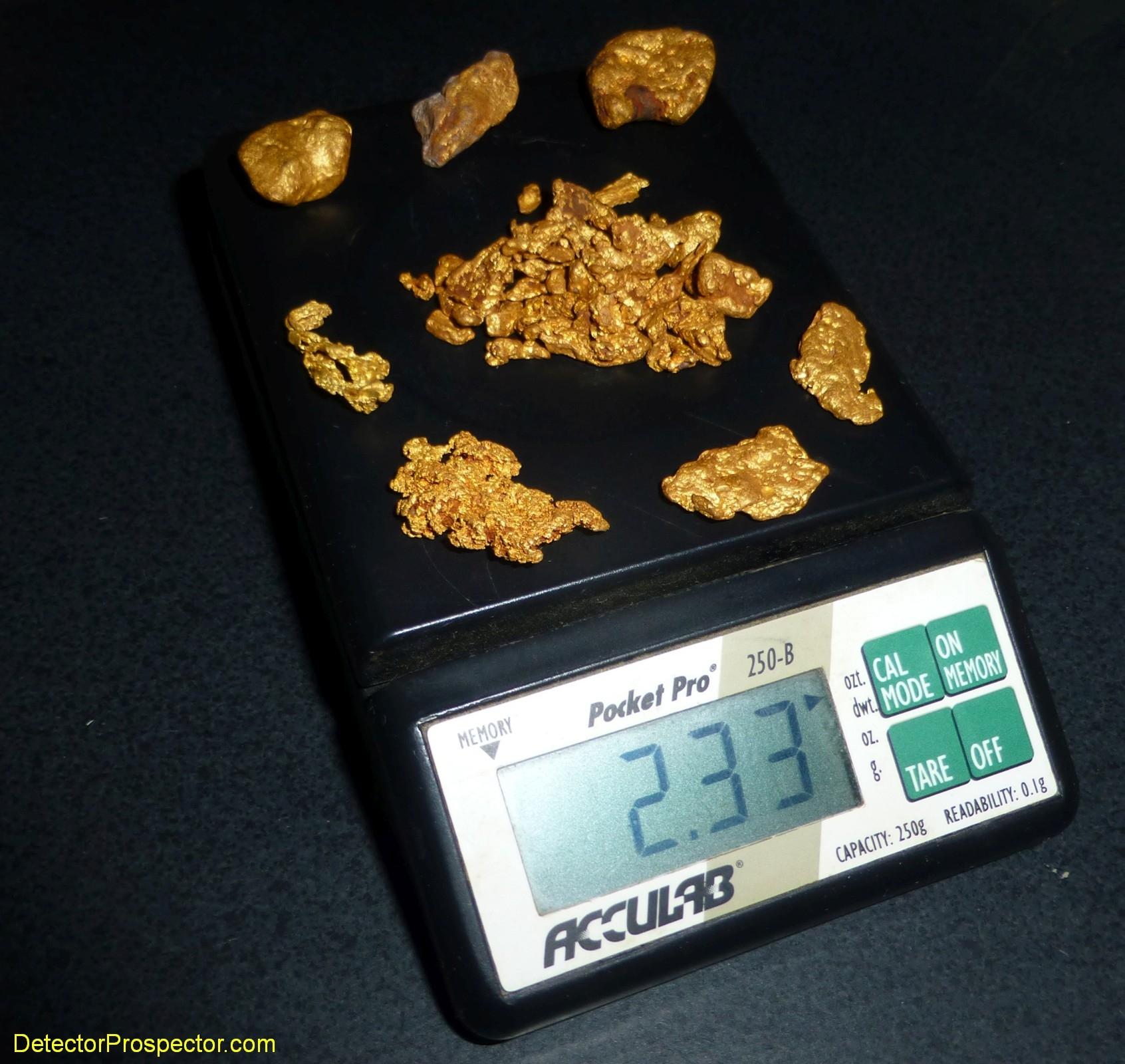 steve-herschbach-2_33-oz-gold-found-australia-2011.jpg