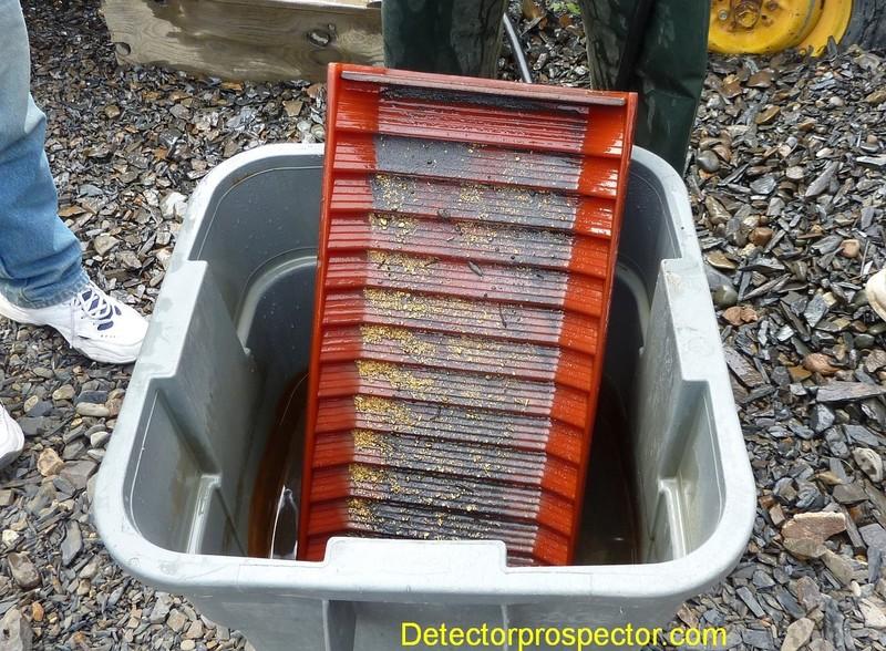 2012-ganes-creek-denver-goldsaver-cleanup.jpg
