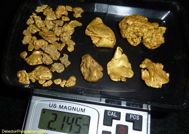 gpz-nevada-gold-on-scales-herschbach.jpg