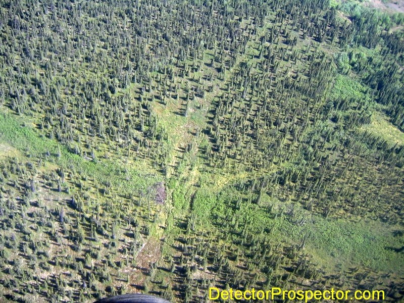 old-dozer-trail-above-camp-moore-creek.jpg