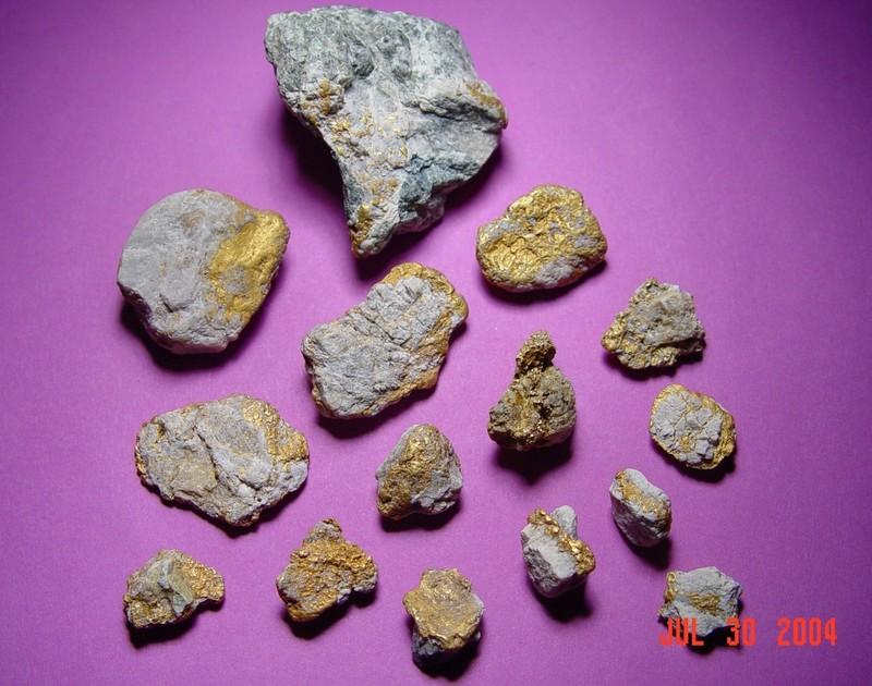 steves-gold-specimens-moore-creek-2004.jpg