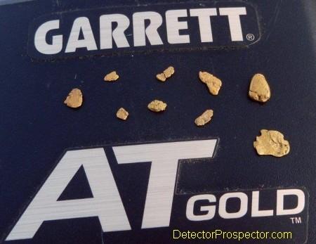 herschbach-nuggets-garrett-at-gold.jpg
