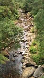 Mystery Creek..jpg