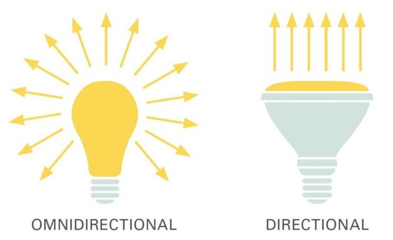 flashlight-vs-lightbulb.thumb.jpeg.ed35cb92b7e7146a3f87a9a488afcb0e.jpeg