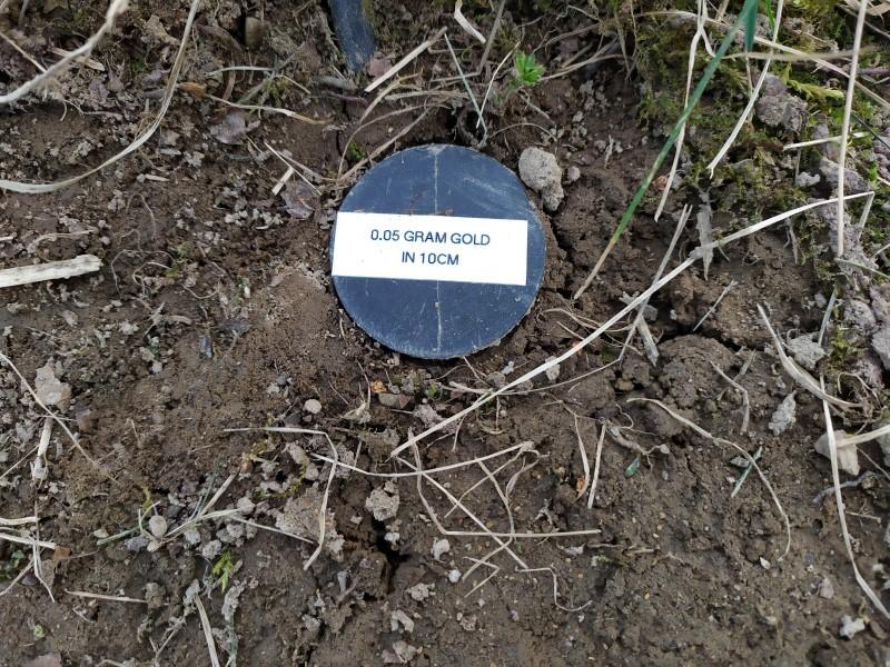 3x5 mm -0.05 gram gold in 10cm low mineralized terain.jpg